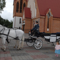 Carozza a cavalli