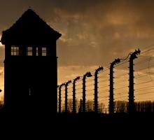 Auschwitz Birkenau Nazi Camp